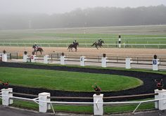 The track with a view of the Paddock during early morning training hours.
