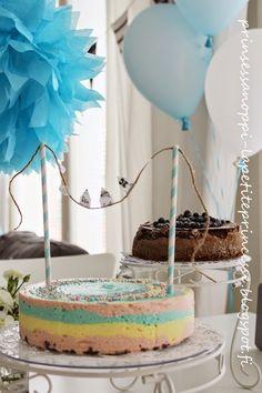 The rainbow cheesecake with white chocolate