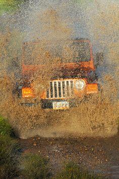 Jeep in its natural habitat