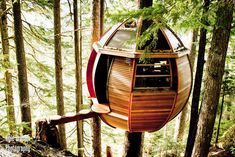 Joel Allen's HemLoft, a small tree house in the backwoods of Whistler, British Columbia, Canada.