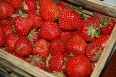 Strawberry, Fruit, Food, Essen, Strawberry Fruit, Meals, Strawberries, Yemek, Eten