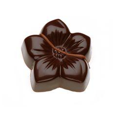 CHA_OurChocolates_Blossom_160404