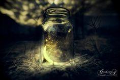 Night Stories - null