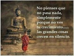 No pienses que no pasa nada, simplemente porque no ves tu crecimiento.... las grandes cosas crecen en silencio. #frases budistas