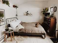 One Of The Couple's Furry Friends Waiting On The Bed Tour On Design*Sponge