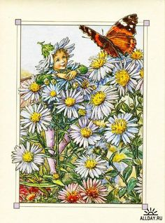 Illustration for the Michaelmas Daisy Fairy from Flower Fairies of the Autumn. Author / Illustrator Cicely Mary Barker More Cicely Mary Barker, Flower Fairies, Flower Art, Daisy Flowers, Fairy Land, Fairy Tales, Michaelmas Daisy, Kobold, Vintage Fairies