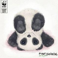 Illustrator Tatiana Guleva (@peppy.orange) • Instagram photos and videos Panda Painting, Panda Art, Panda Love, Character Design, Photo And Video, Illustration, Bears, Orange, Videos