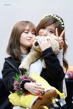 T-zuyu and MOMO - Twice