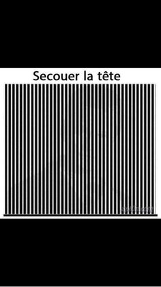 I believe in English it says find the head ( tête ) but I've only taken one year of French so… Cool Illusions, Optical Illusions, Funny Facts, Funny Jokes, Funny Images, Funny Pictures, Op Art, Memes, Rage