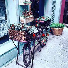 #bicycle #bike #flowers #colorful Baby Strollers, Succulents, Planter Pots, Tumblr, Bike, Instagram Posts, Flowers, Bicycles, Wanderlust