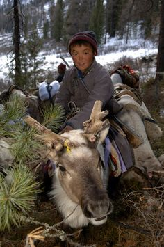 """Tsaatan (Dukha) reindeer people nomads in Mongolia. By Hamid Sadar/Corbis News from """"Mongolia - In Search of the Valley of Gold."""" 2005"""