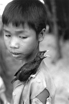 Photo by Ferdinando Scianna. VIETNAM: poor child with bird, 1993.