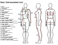 Measurement chart for regalia, ribbon shirts (womens)