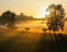 Misty Morning Sunrise by faithbeni on Etsy