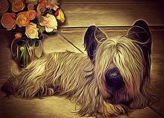 Shop for dogs art from the world's greatest living artists. All dogs artwork ships within 48 hours and includes a money-back guarantee. Choose your favorite dogs designs and purchase them as wall art, home decor, phone cases, tote bags, and more! Skye Terrier, Terriers, Dog Artwork, Dog Design, All Dogs, Mans Best Friend, Fine Art America, Dog Cat, My Arts