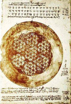La Fleur de Vie (Flower of Life) selon Léonard de Vinci.