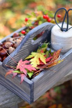 Autumn Box, by Blueberry