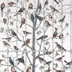 Panneau Uccelli Fornasetti - Cole and Son Cole And Son Wallpaper, Bird Wallpaper, Wallpaper Panels, Wallpaper Online, Pattern Wallpaper, Feature Wallpaper, Kitchen Wallpaper, Wallpaper Decor, Designer Wallpaper