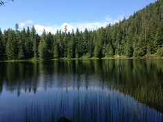 19 hikes in Western Washington to explore with kids Camping And Hiking, Hiking Trails, Backpacking, Vacation Places, Vacation Spots, Vacations, Western Washington, Snohomish Washington, Everett Washington