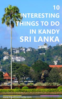 10 things to do in Kandy Sri Lanka. Travel tips in Kandy.  See more travel tips about Sri Lanka at NatnZin