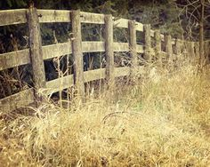 Country Fence field fence rustic
