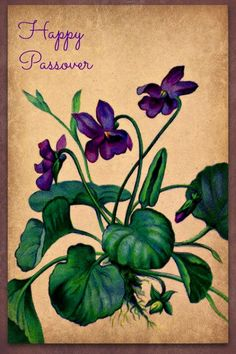 """""""Pretty card made by a friend of mine."""" -- very pretty indeed."""