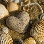 Heart-shaped shells