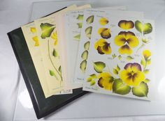#DonnaDewberry Donna #Dewberry One Stroke lot/set of 32 #art and #craft #floral #designs or 16 teaching #instructional card sheets with birth month #flowers and a #seasons or #seasonal theme from 2001 in full #bright and #vibrant #color with dark green, black and clear plastic vinyl case cover folder holder and #artist signature, excellent used condition http://www.ebay.com/itm/DONNA-DEWBERRY-ONE-STROKE-LOT-32-DESIGNS-BIRTH-MONTH-FLOWERS-SEASONS-SEASONAL-/141840117299?hash=item2106546e33