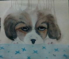 Animal Study I  #Puppy Loose #watercolor technique