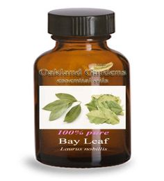 Bay Leaf - Essential Oil (laurus nobillis) Common names bay laurel bay bay leaf laurel leaf sweet bay. Aromatic and slightly bitter spicy sweet medicinal. Blends well with Pine Cypress and Jun...