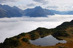 View from Sunnig Grat summit - Uri canton, Switzerland Landscape Photography, Nature Photography, El Canton, Above The Clouds, Pine Forest, Once In A Lifetime, Nature Photos, Nature Hd, Where To Go