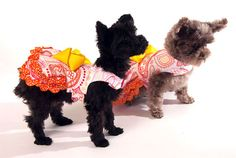 Paisley Dog Dress with Yellow Bow and Orange by thedoggiemarket... fun