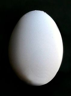 A History of the Egg... Sort of. #Foodidude #History #Foodie