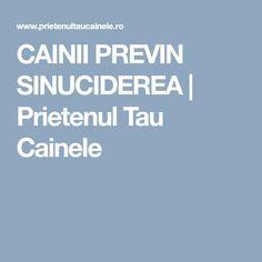 CAINII PREVIN SINUCIDEREA | Prietenul Tau Cainele