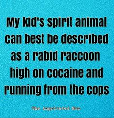 My kid's spirit animal can best be described as a rabid raccoon high o Funny As Hell, Haha Funny, Hilarious, Funny Stuff, Mom Quotes, Funny Quotes, Funny Memes, For Elise, Parenting Humor