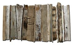 Driftwood, Atlantic Shore, Salvador de Bahia, Brazil.