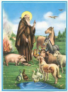 Sant'Antonio Abate è il protettore degli animali domestici: ecco perché :http://www.qualazampa.news/2018/01/17/santantonio-abate-e-il-protettore-degli-animali-domestici-ecco-perche/