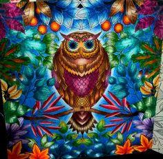 Minha coruja - Jardim Secreto - Johanna Basford  pintada por mim @jessicasantin