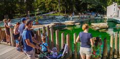 The guide to visiting Ljubljana Zoo. If you are visiting the capital of Slovenia with kids, your itinerary should definitely include a few fun hours spent at the lovely Ljubljana Zoo.