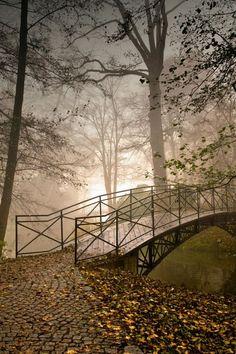 Beautiful Photography of Forest Bridge, Pszczyna, Poland photo via misaki Foto Nature, All Nature, Beautiful World, Beautiful Places, Beautiful Pictures, Misty Forest, Tree Photography, Scenic Photography, Landscape Photography