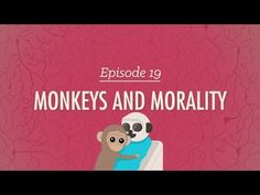 Monkeys and Morality: Crash Course Psychology #19 - YouTube  Great video about the psychology of the kids we teach, talking about how they are developing their own self-concept as they are proceeding through school. Can help us better understand and hopefully teach our students. And definitely shows how important a positive and safe classroom culture is to the developing mind #positivity #safe