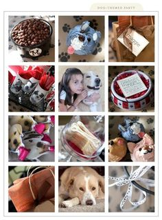 dog themed party » Silverbox Creative