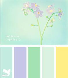 delicate spring