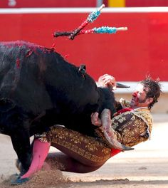 Photo Gallery - Photo 2 - Photo Gallery for Interview with Gored Matador Juan José Padilla Pamplona, Brave Animals, Bull Horns, He Is Coming, Flamenco Dancers, Spiegel Online, Man Games, World Language Classroom, Man Humor
