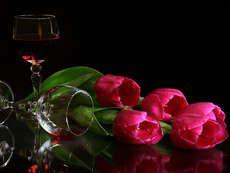 desktop wallpaper for still life, 265 kB - Barnes Brook Romantic Mood, Romantic Night, Hopeless Romantic, Tulips Flowers, Pansies, Tulip Wine Glasses, Oil Painting Flowers, Rose Photos, Still Life Photography