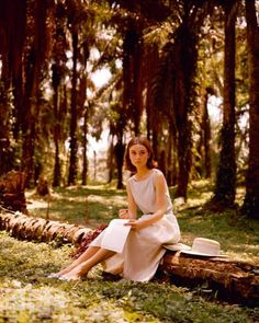 Al Fresco Audrey  Audrey Hepburn composes a letter in a palm grove, circa 1955. Hepburn loved nature, and preferred gardening and the quiet life to the glamourous parties of Hollywood.