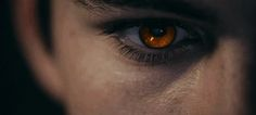 The moonlight softened the harsh gold of James' eyes to a dark umber. How changed would his life have been if his eyes had not been a sign of his difference?