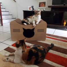 Rabo Quente beautiful cat lounger and cat cave! #cats #CatBed #CatLounge