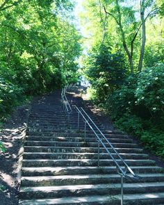 14 Orte, an denen Ihnen ganz Berlin zu Füßen liegt   TRAVELBOOK