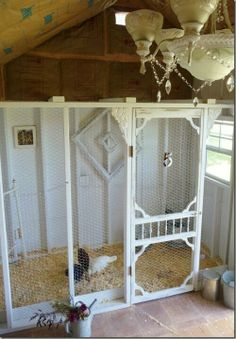 Shabby chic chicken coop, luv the ambience of the light!